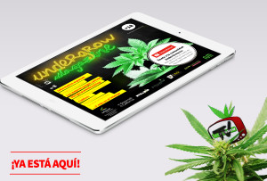magazine 882-Isometric-iPad-Air-Silver-Mock-up