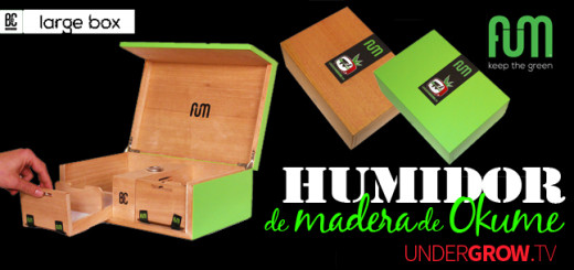 para blog lportadas cajas fum large