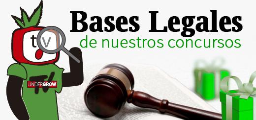 imagen para blog bases legales