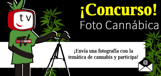 imagen para blog concurso de fotos