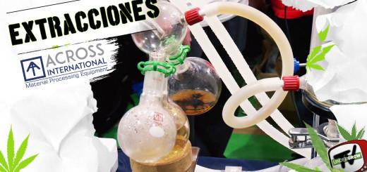 weed aextracciones 2018 (1)