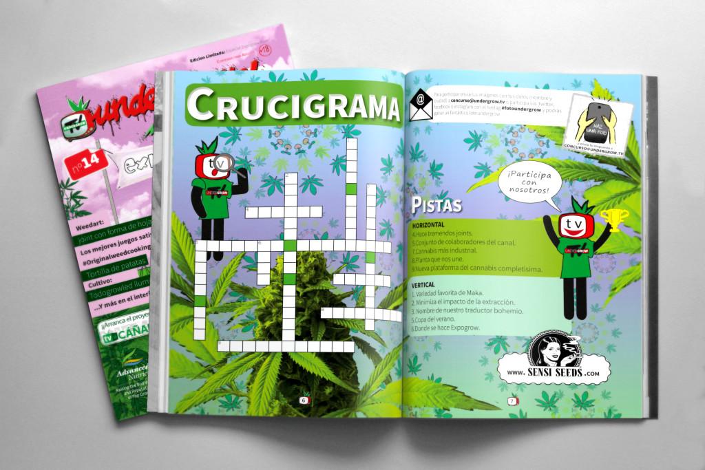 MagazineMockupV311