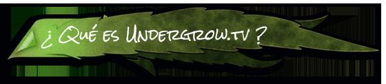 Qué es Undergrow.tv